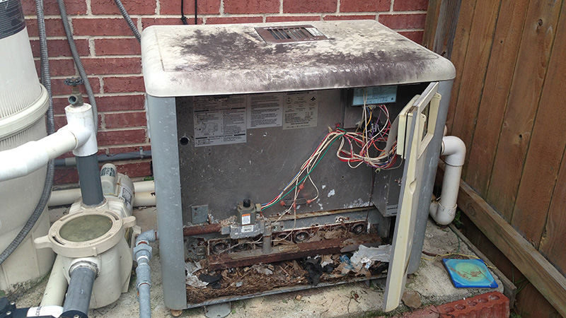 Neglected pool heater with door open showing rodent infestation