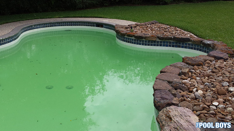 Green pool water after heavy rains and power off for several days