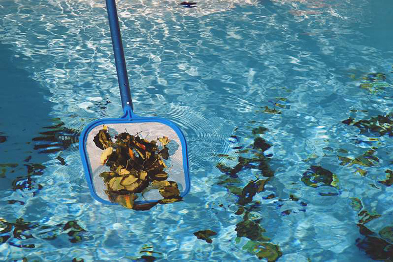 Keep leaves and debris out of your pool by trimming branches and bushes away from the pool