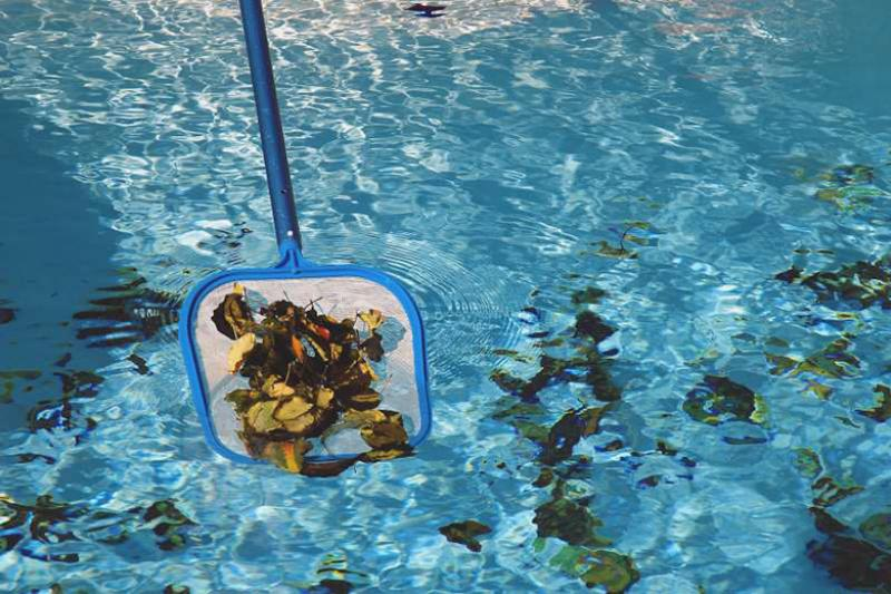 Cleaning debris from a pool requires proper tools